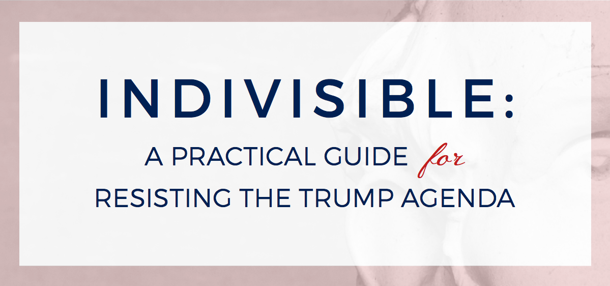 Article of the day: read the Indivisible Guide to rebuilding the progressive movement from the groundup