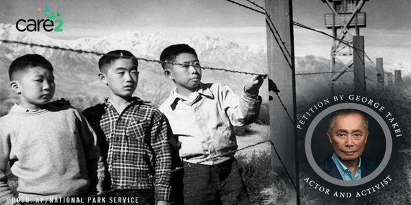 The image shows a photo of three young Japanese boys in an internment camp during WWII, with a photo of the actor George Takei next to it.